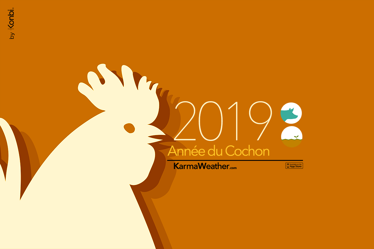 Coq 2019