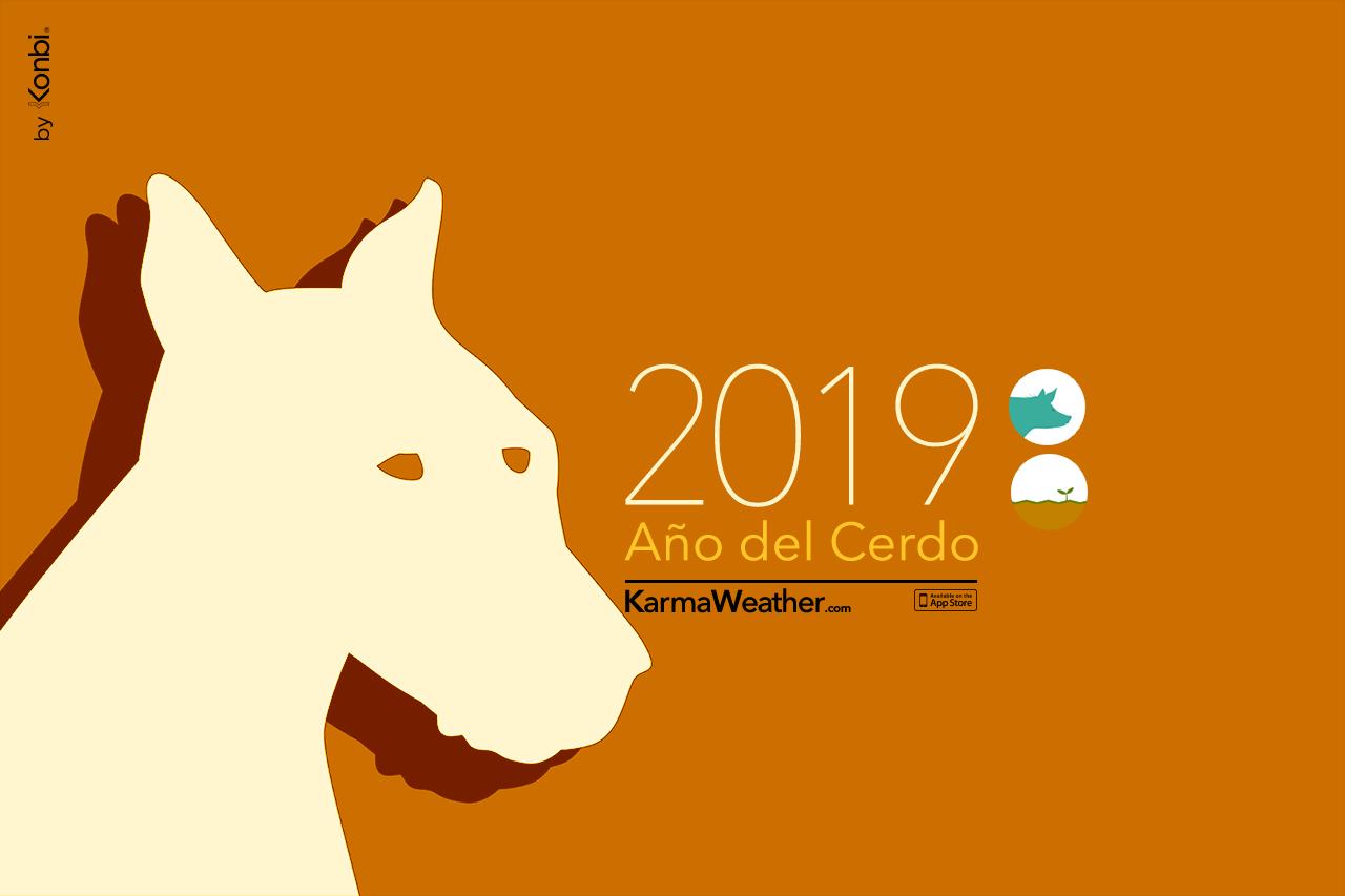 Perro 2019