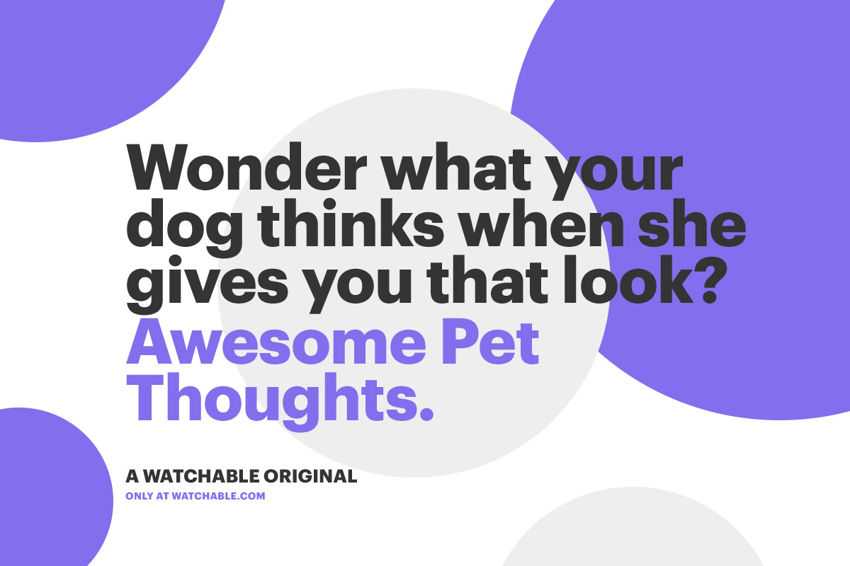 cw-pop-type-petthoughts-03-ajl.jpg