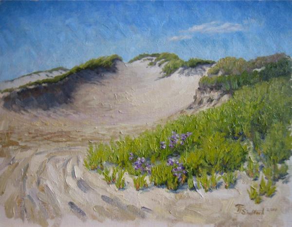"""East Hampton Dunes Secret Spot"""