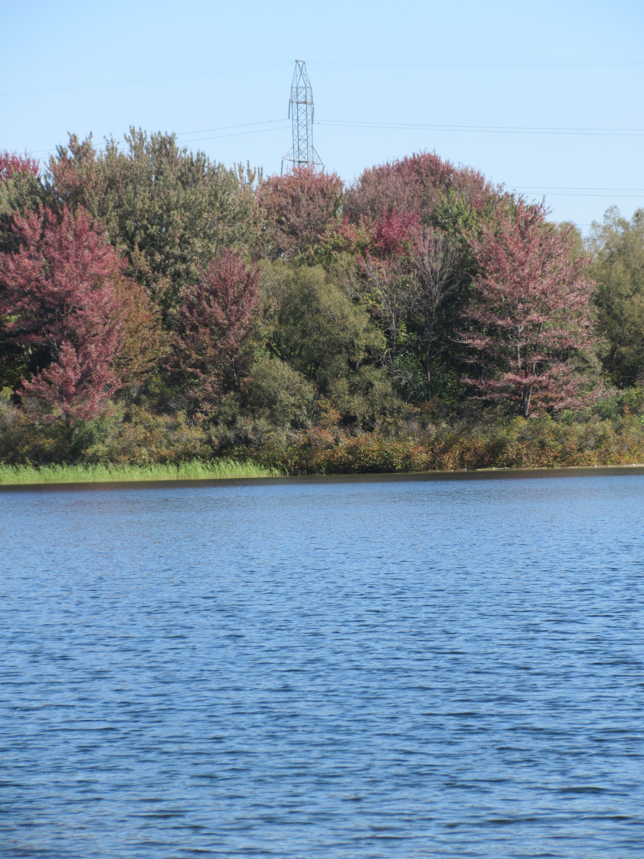 """""""You calm right down when you're looking at water and pretty trees."""""""