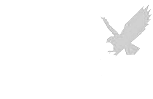 Silver Tail logo.png