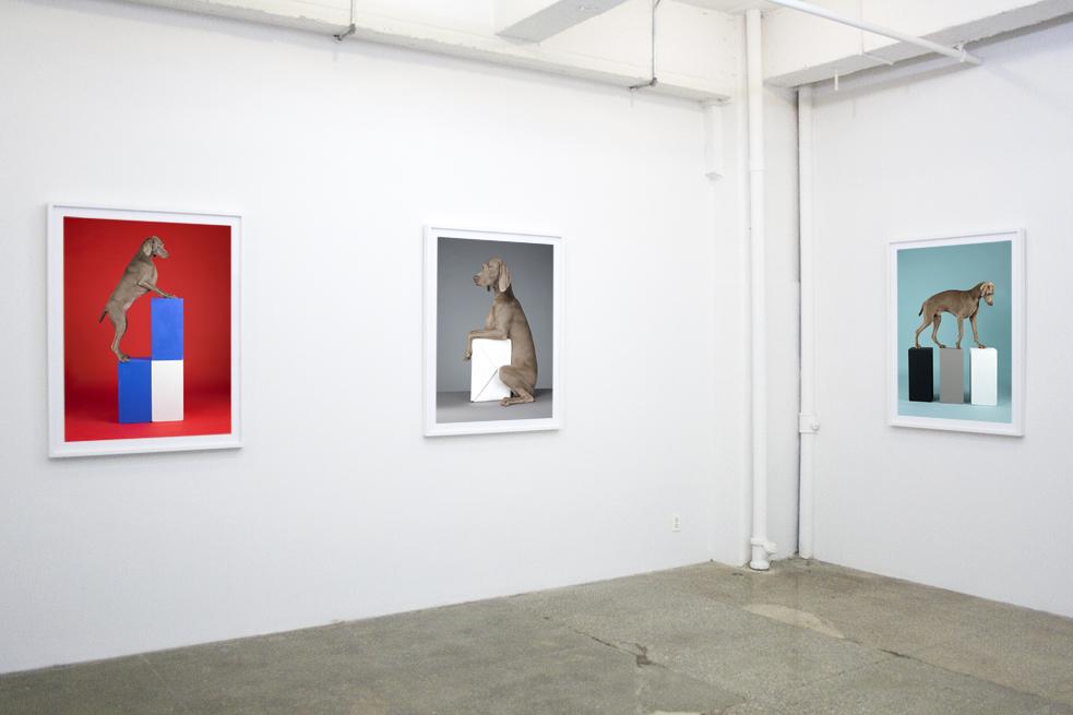 William Wegman:  Cubism and other -isms