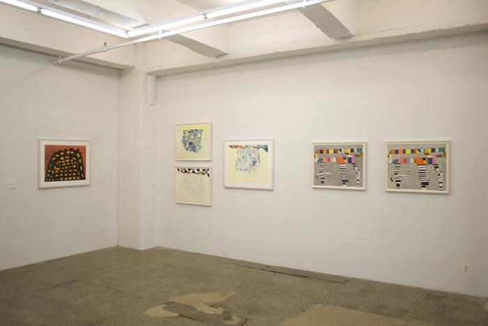 Installation View: Thomas Nozkowski: New Editions
