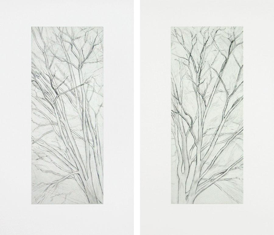 Winter Pin Oak Diptych