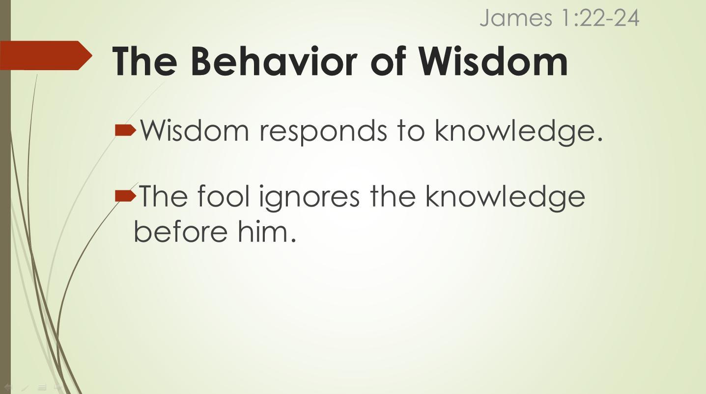 behavior4.jpg