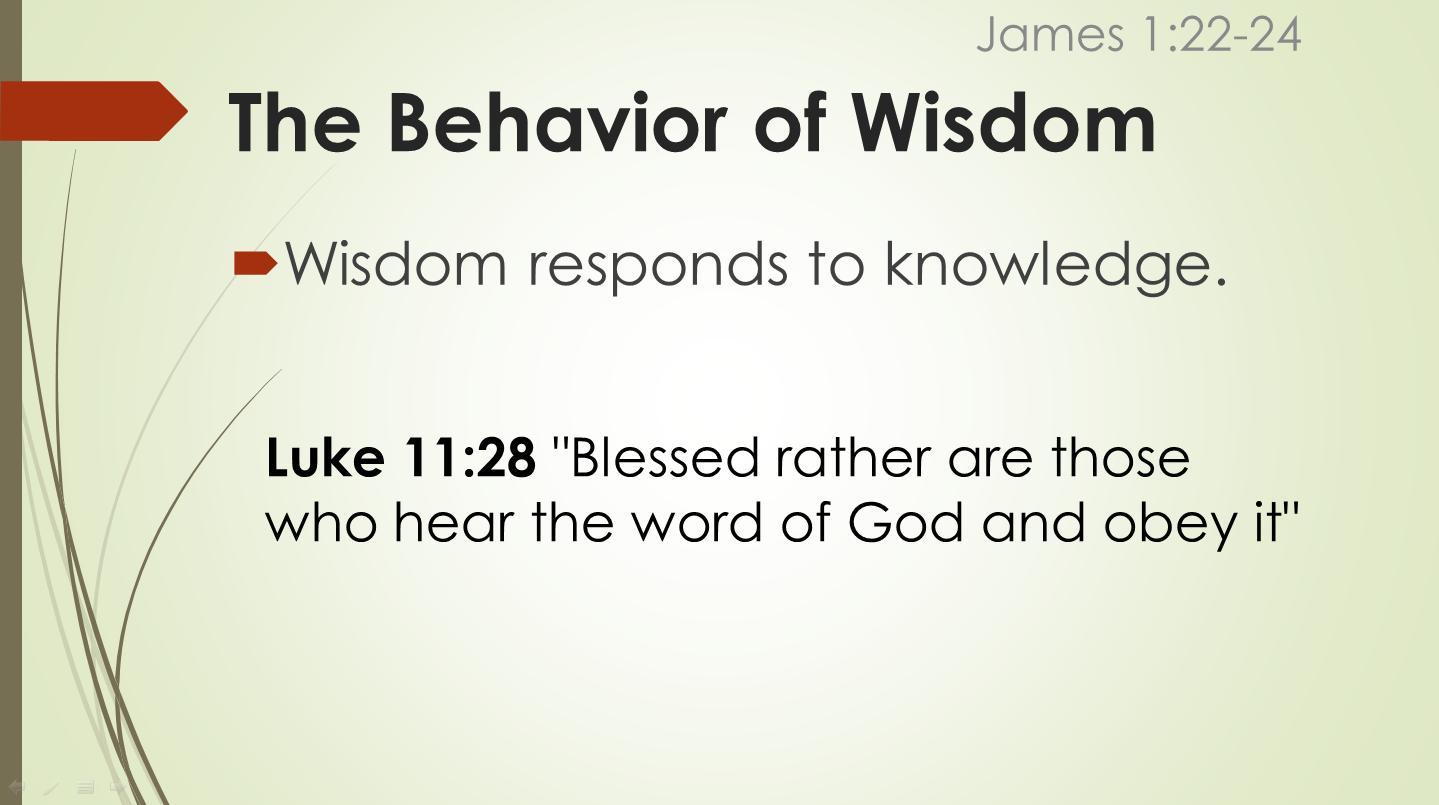 behavior3.jpg