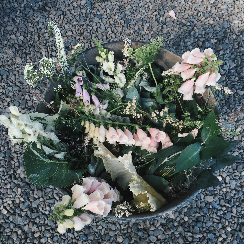 flowerbin01
