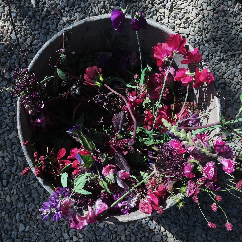 flowerbin02