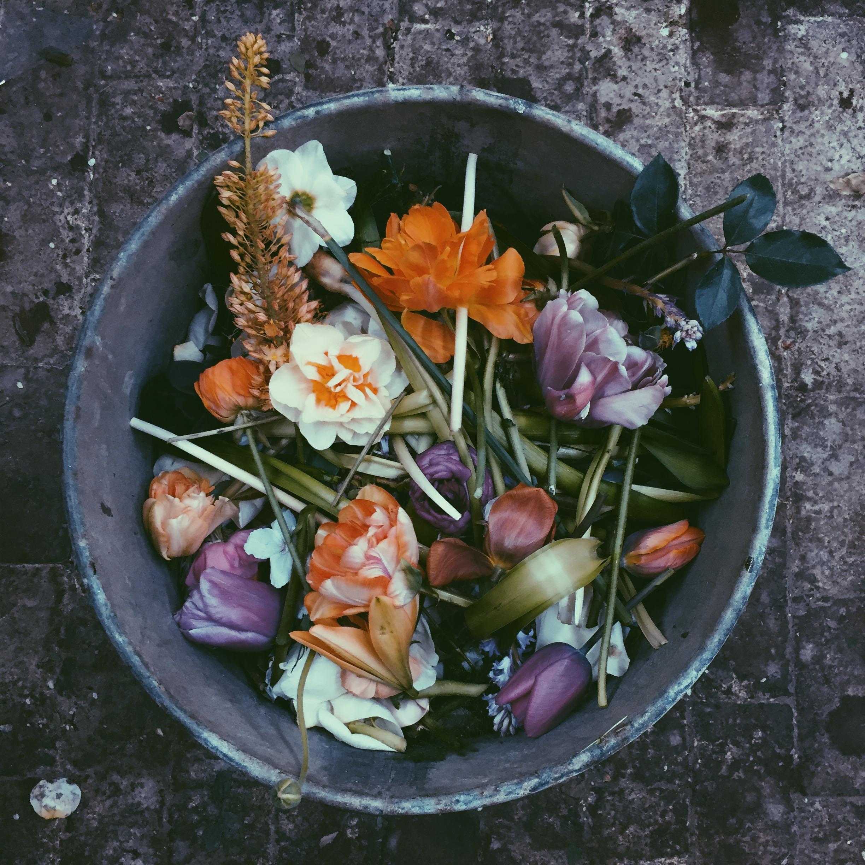 flowerbin07