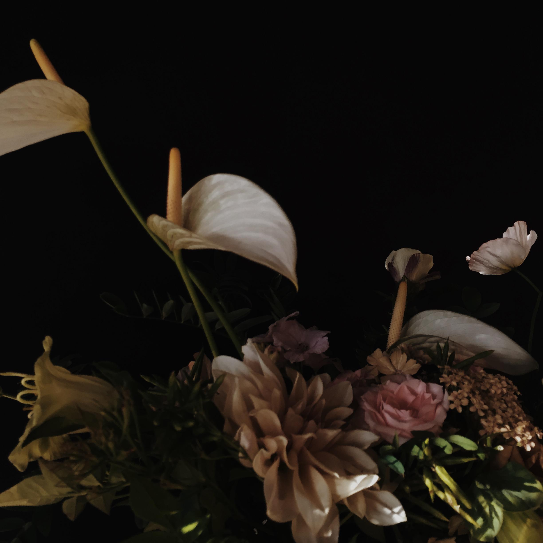 Vervain moody summer flowers 03