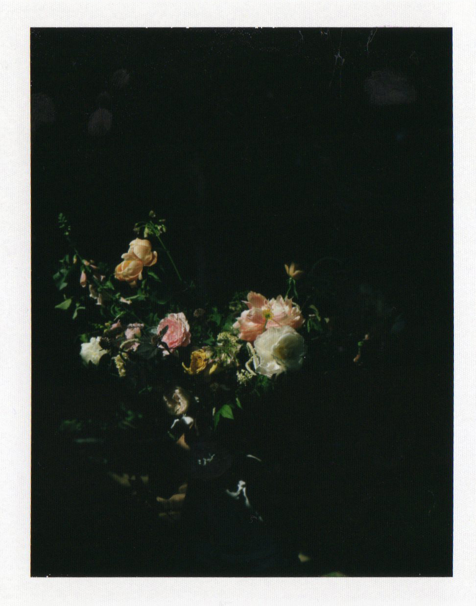 vervain polaroid vase image wedding flowers