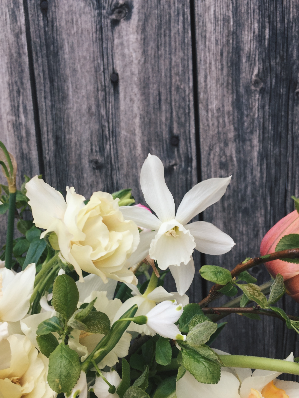 vervain spring bouquet 03