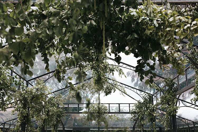 hanging foliage canopy with summer foliage for an elegant London wedding