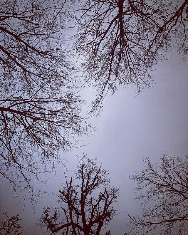 5 seconds of daylight. - #november