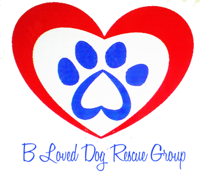 BLoved Rescue Group in Grantville, PA
