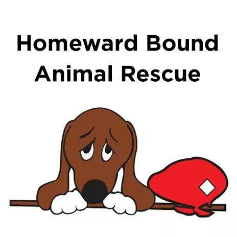 Homeward Bound Animal Rescue located in Mechanicsburg, Pennsylvania