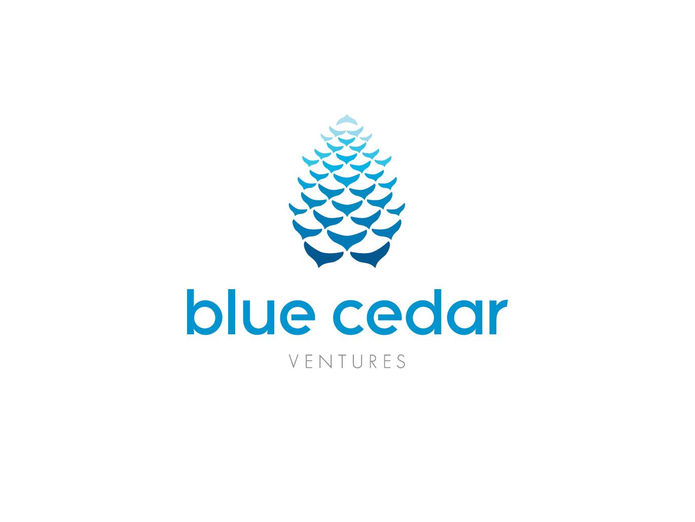BlueCedarVenturesLogo