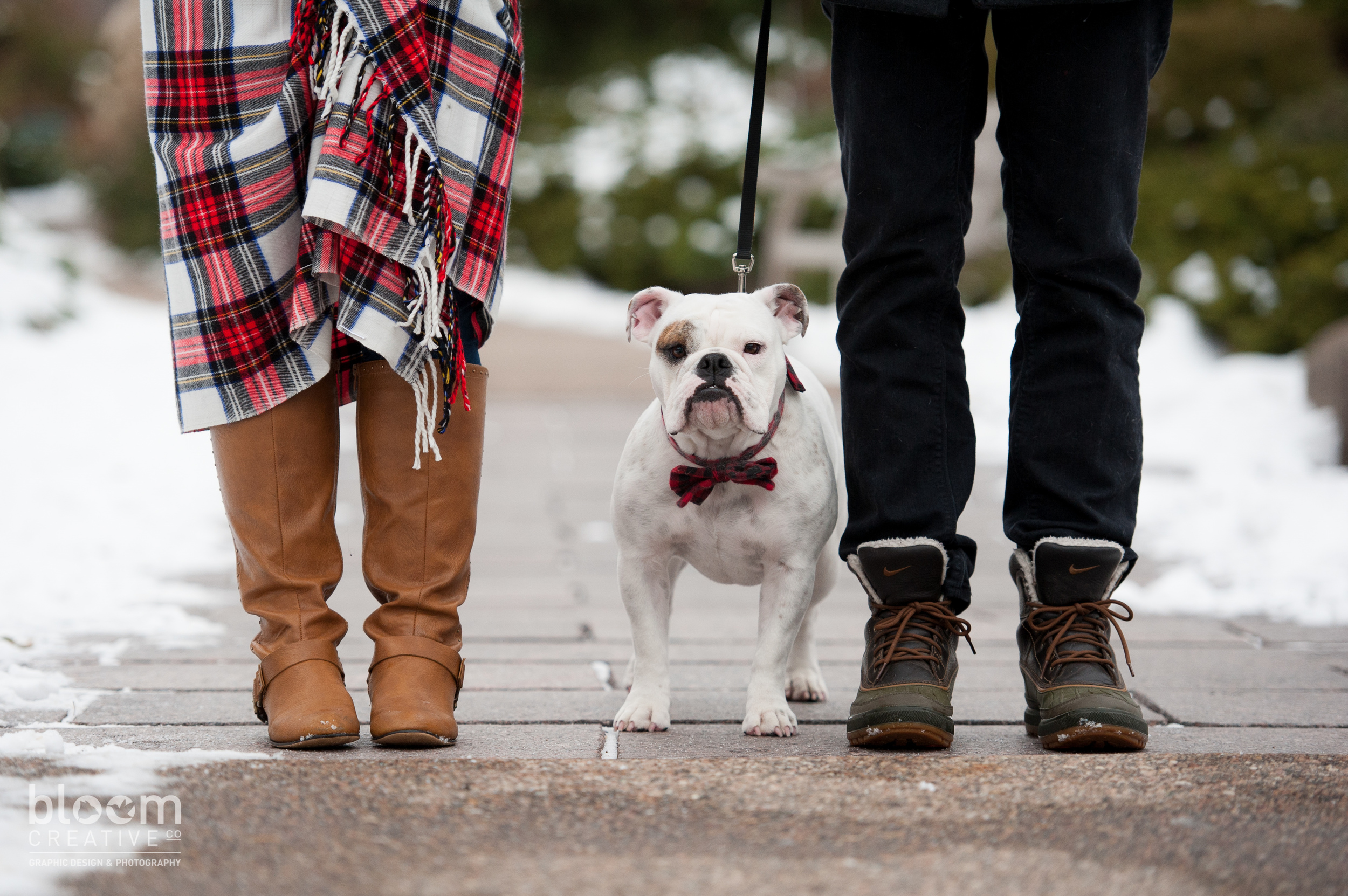 MinneapolisEngagementBulldog9