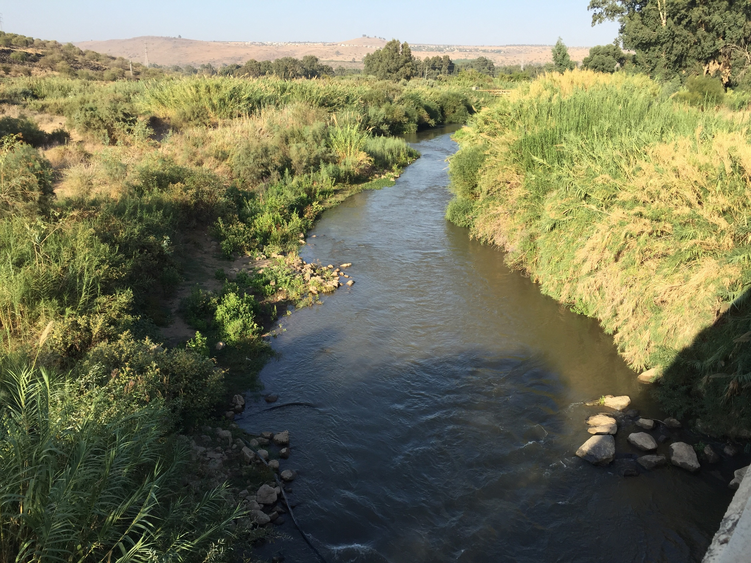 The Jordan river before it enters the Sea of Galilee from the north.
