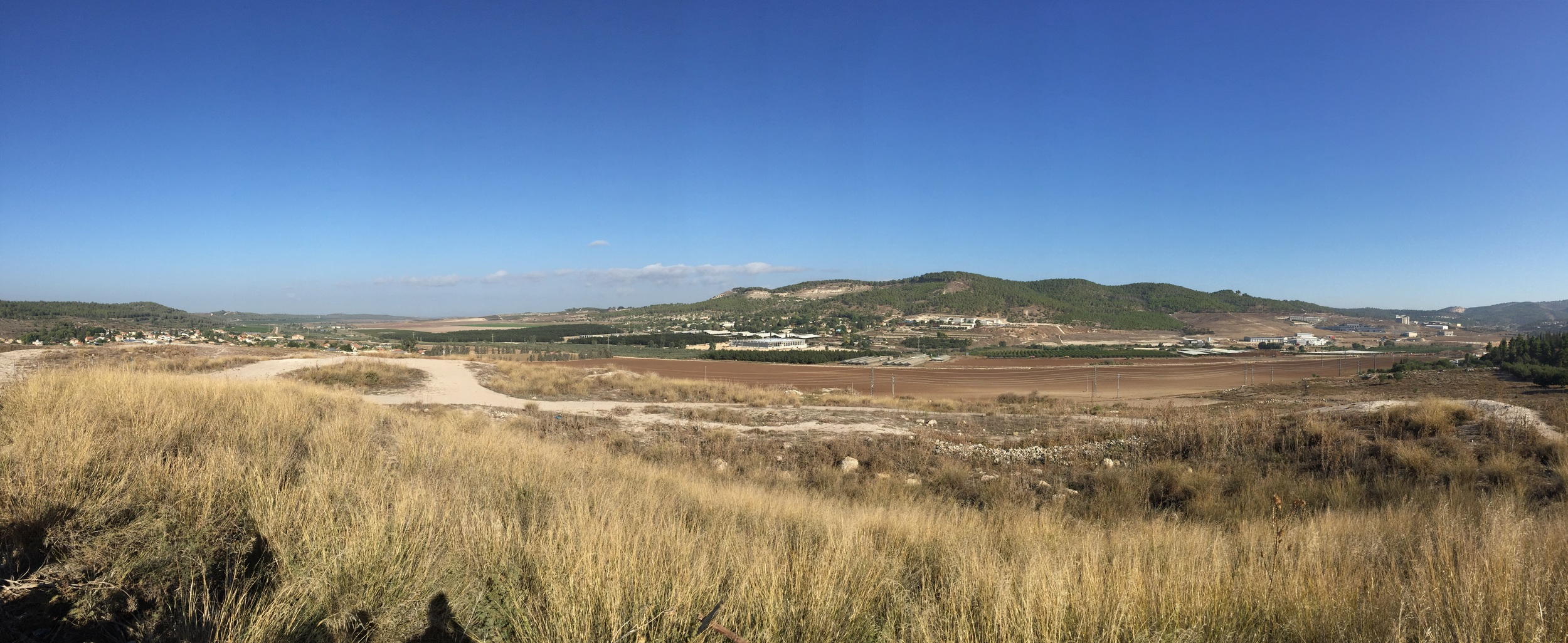 This is a panoramic view of the north side of the Sorek valley. Through the valley in the distance on the left of the photo is Tel Azekah, and on the right side of the green hill with the tree standing alone is the area where Zoar would have been. The photo was taken from the tel of Beth-Shemesh. One of the significant Biblical events that took place in this valley is when the Philistines returned the Ark of the Covenant by way of a wooden cart pulled by oxen. The Israelites in Beth-shemesh would have heard the oxen lowing as they saw the driverless cart rolling up the valley from the left (2 Sam. 5-6). It was in Beth-shemesh that they used the wooden cart as fuel to offer the oxen as an offering to God on a great stone. It was also in Beth-Shemesh where 70 people died because they looked into the ark and decided to place it in storage at Kireath-Jearim for 20 years.