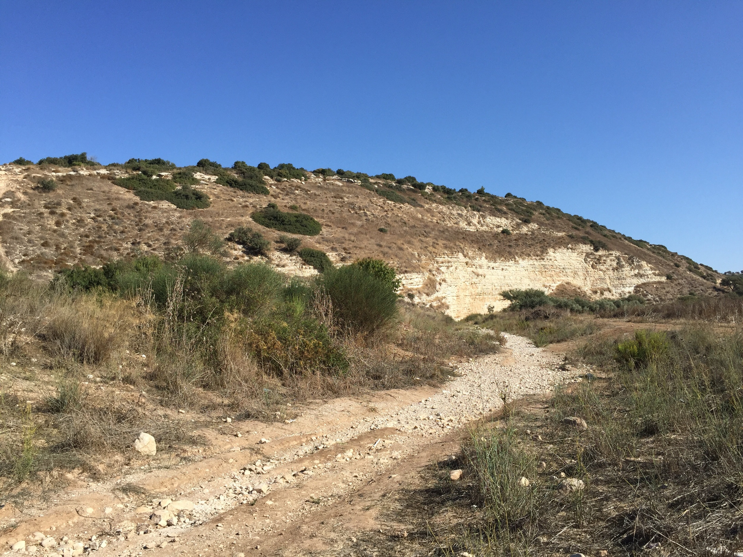 Standing at the foot of the mountain in the Valley of Elah where the Israelites faced the Philistines. The dry brook is where David picked up his five smooth stones for his sling. (We will upload a higher resolution image when we get home.)