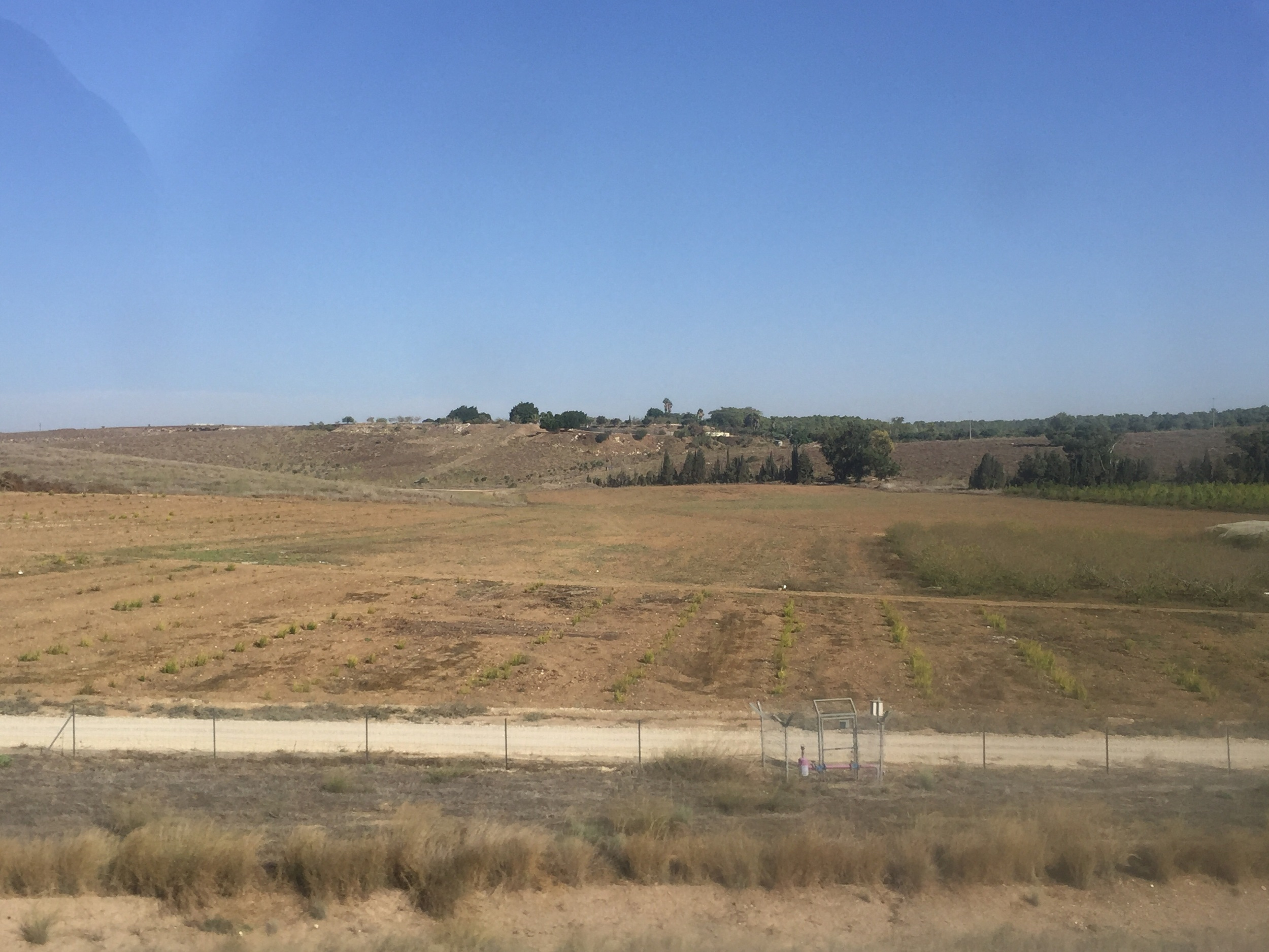 As we drove back to Jerusalem from the Shephelah, we passed the tel of Gath, the hometown of Goliath.  The tel has stones and trees on the hill in the background.