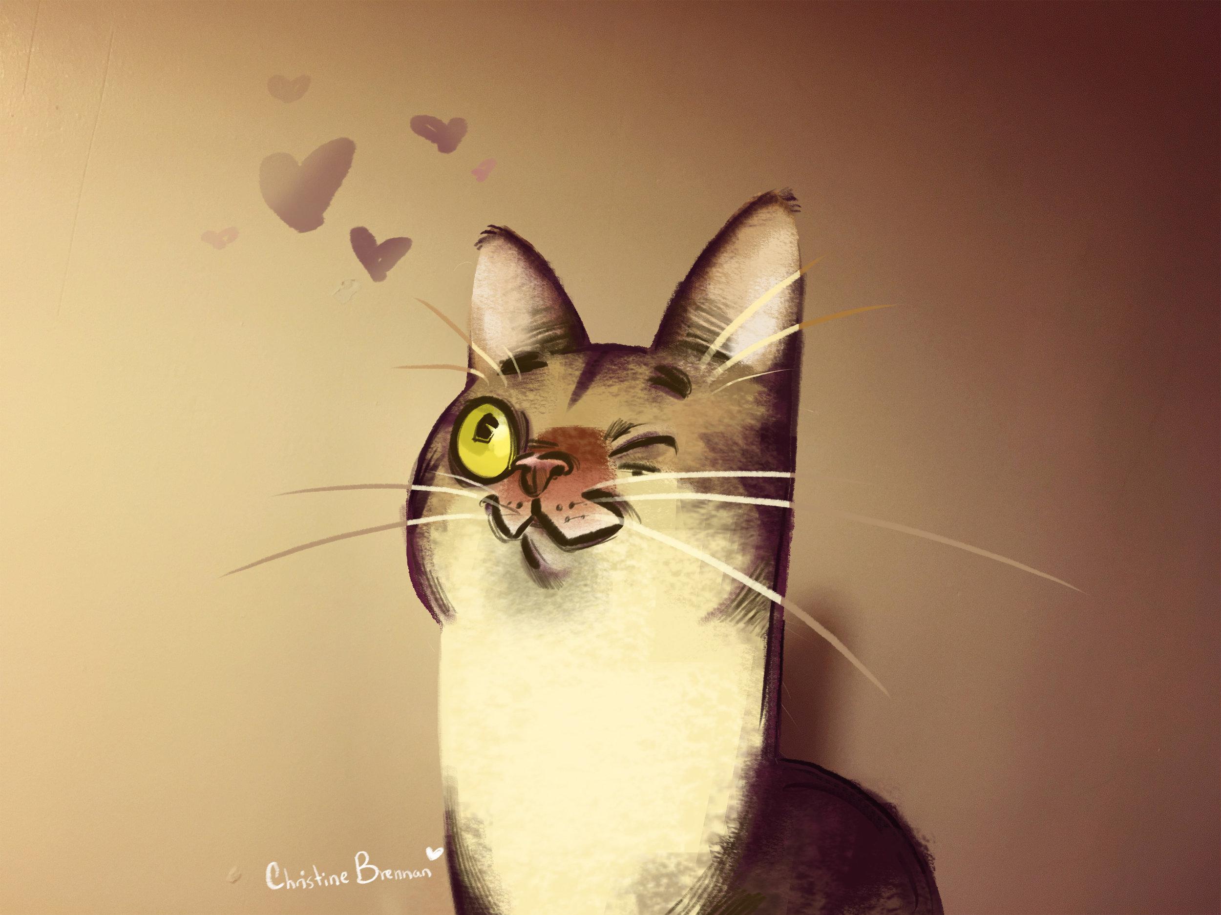 ChristineBrennan_cat!!.jpg