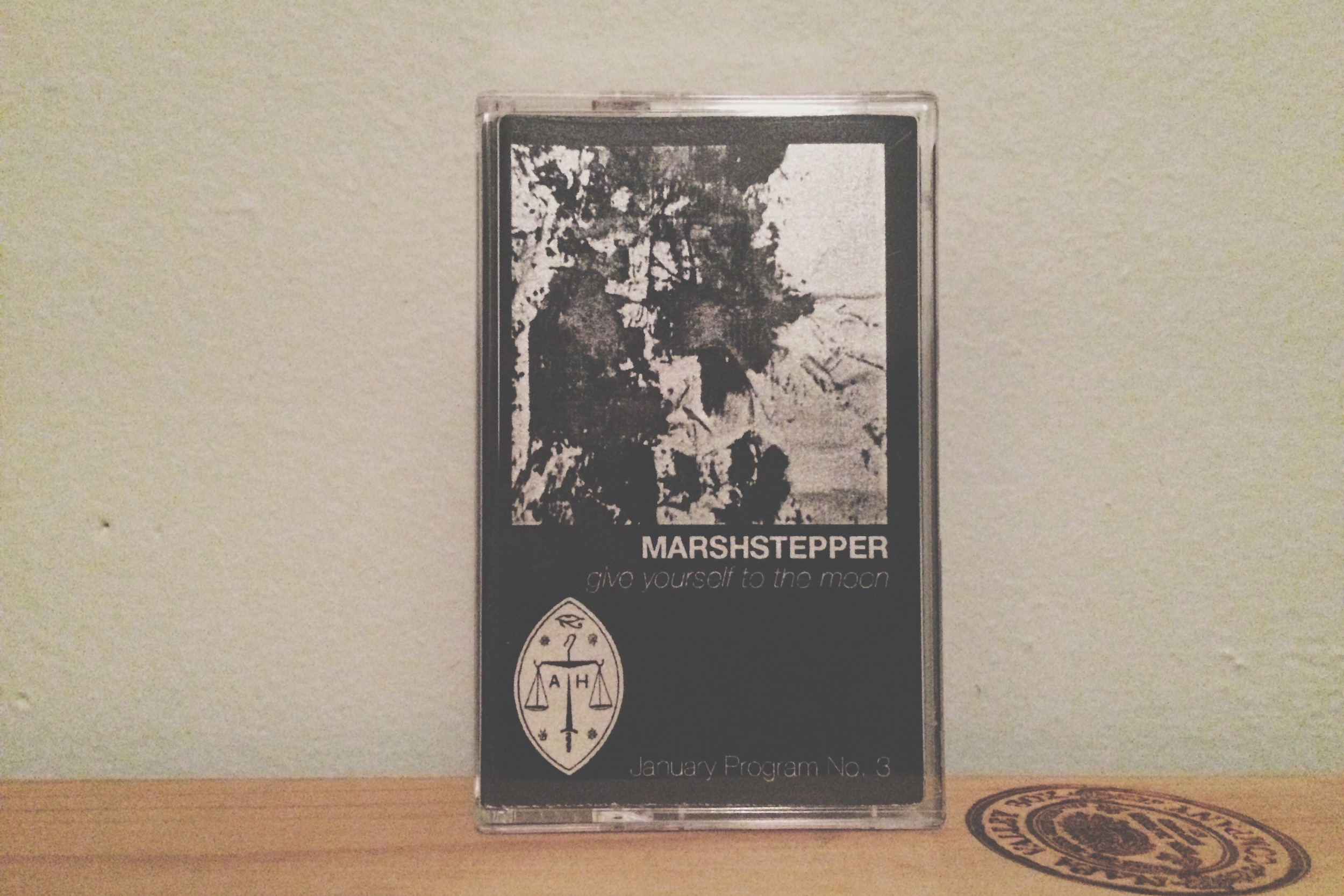 3 04. Marshstepper - Give Yourself To The Moon.jpg