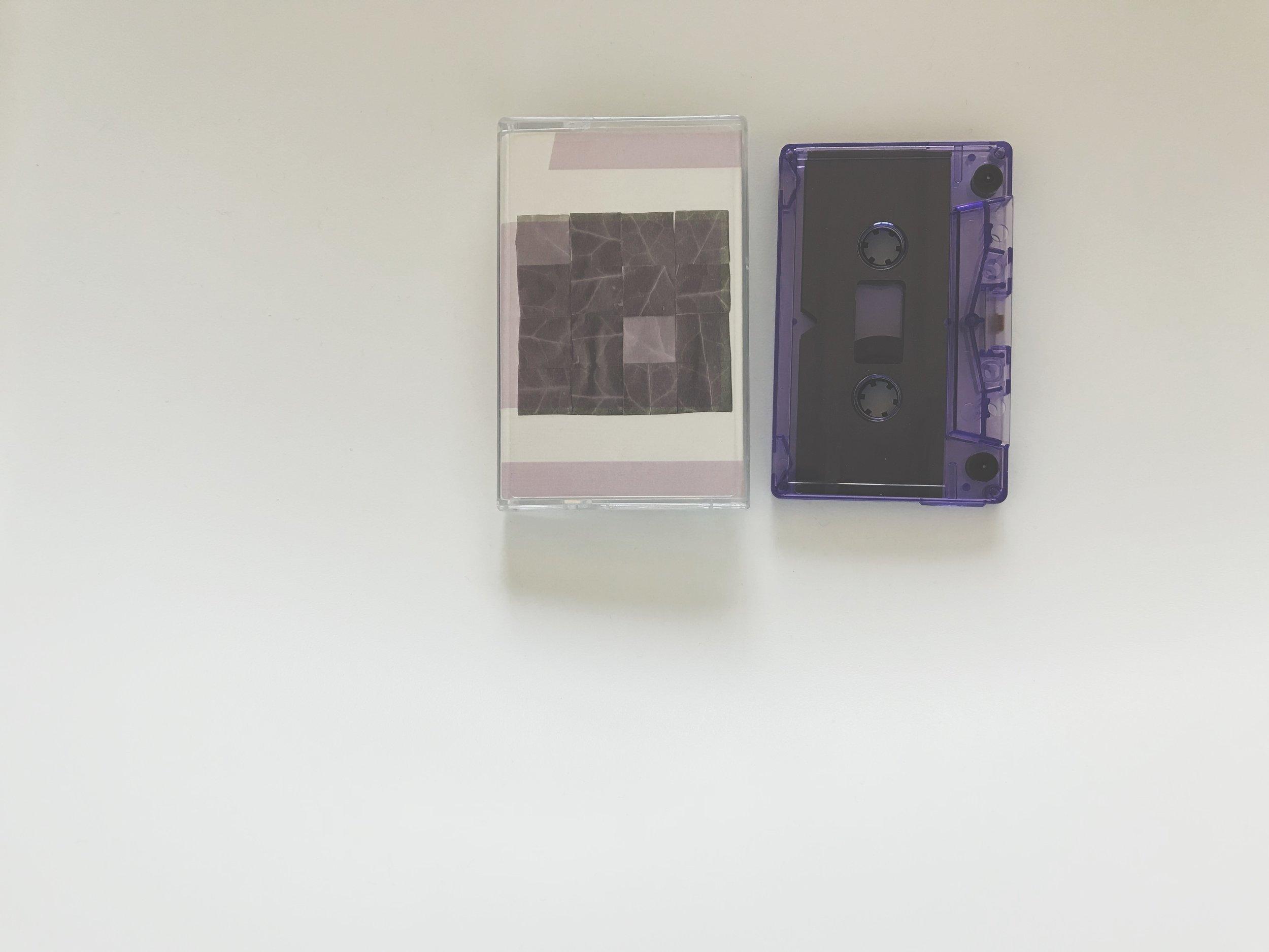 Tüth / Heinali -Heteroticisms Volume 1 (Land Animal Tapes / Kotaktu Collective)