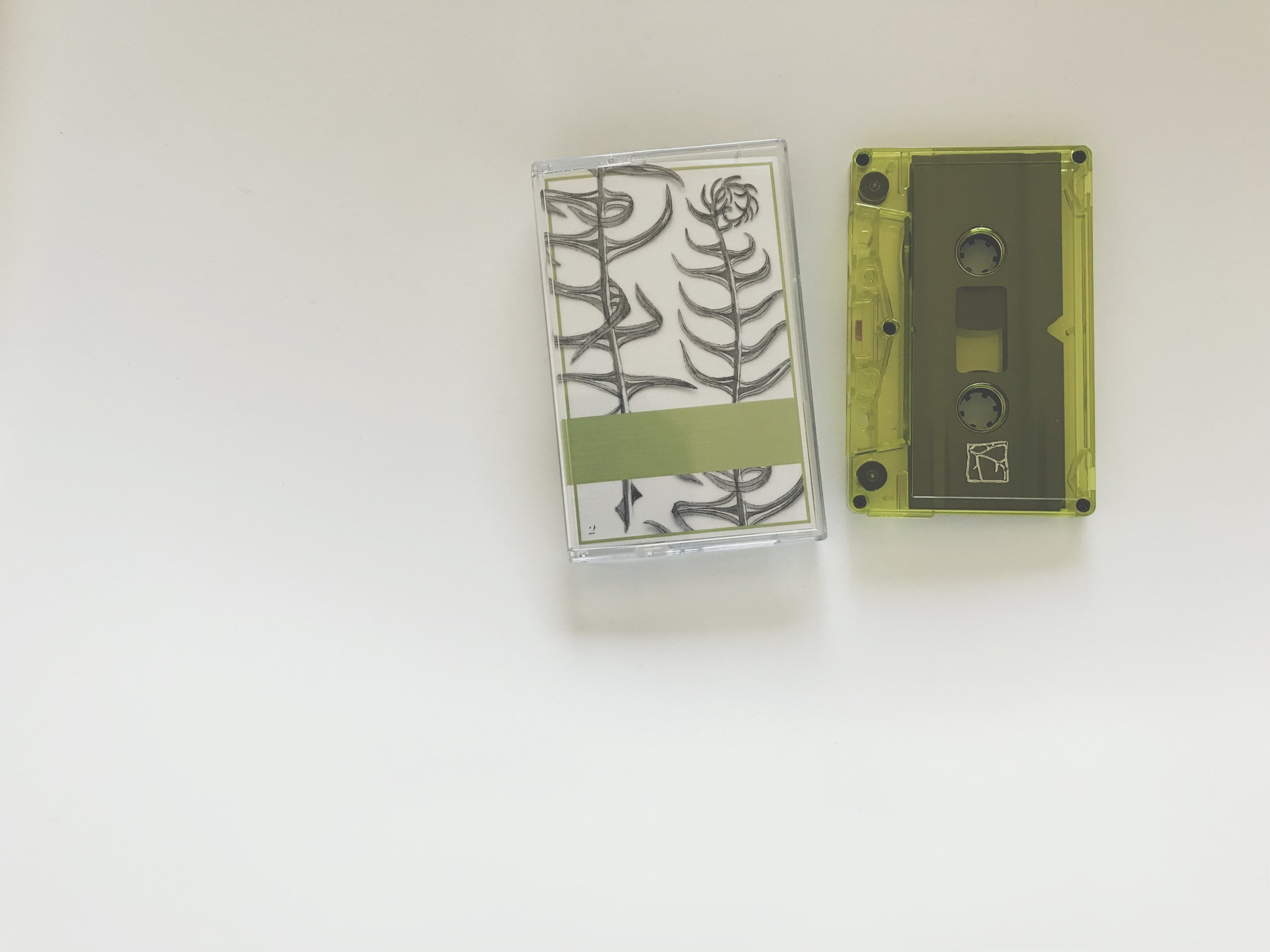 Scattered Purgatory / Eolomea -Heteroticisms Volume 2 (Land Animal Tapes / Kotaktu Collective)
