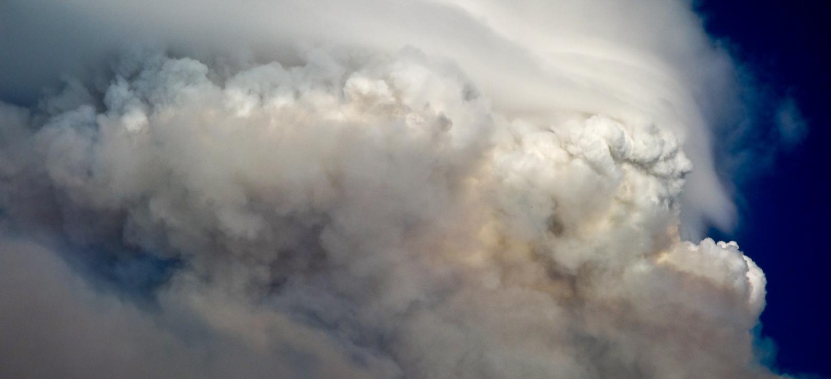 Forest FIre Face Cloud-9.jpg