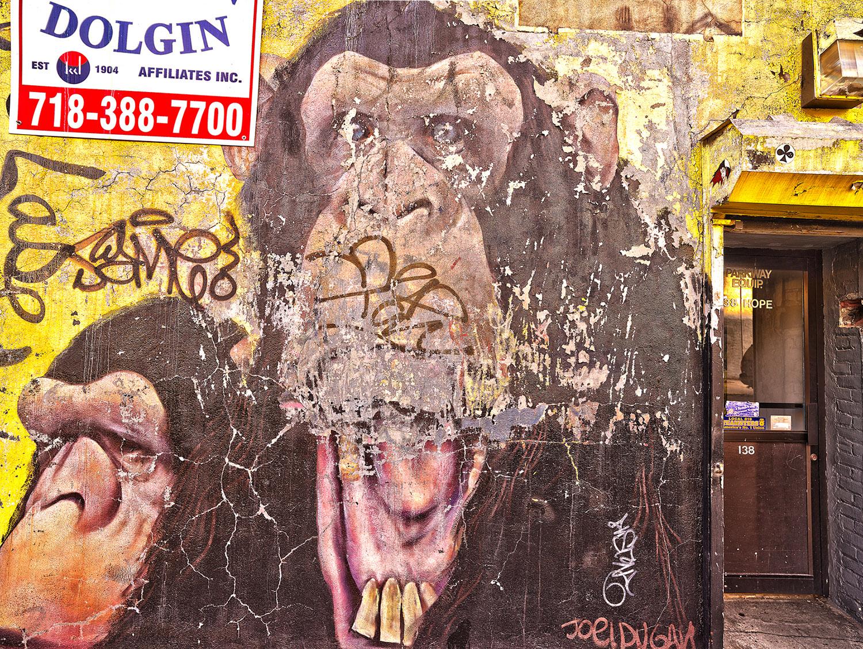 Apes Hope