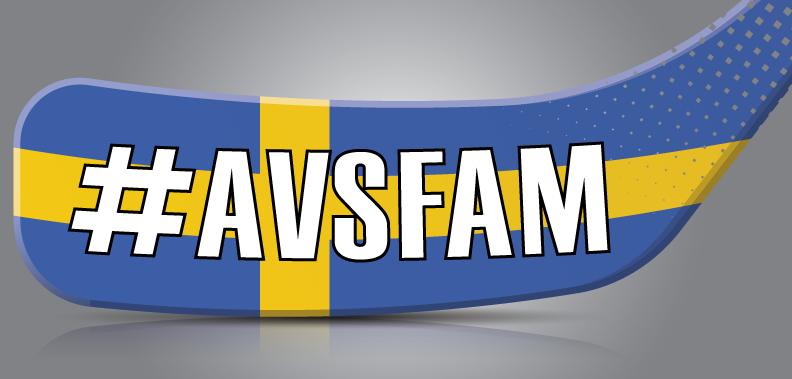 #AVSFAM SWE Twitter/FB Profile background