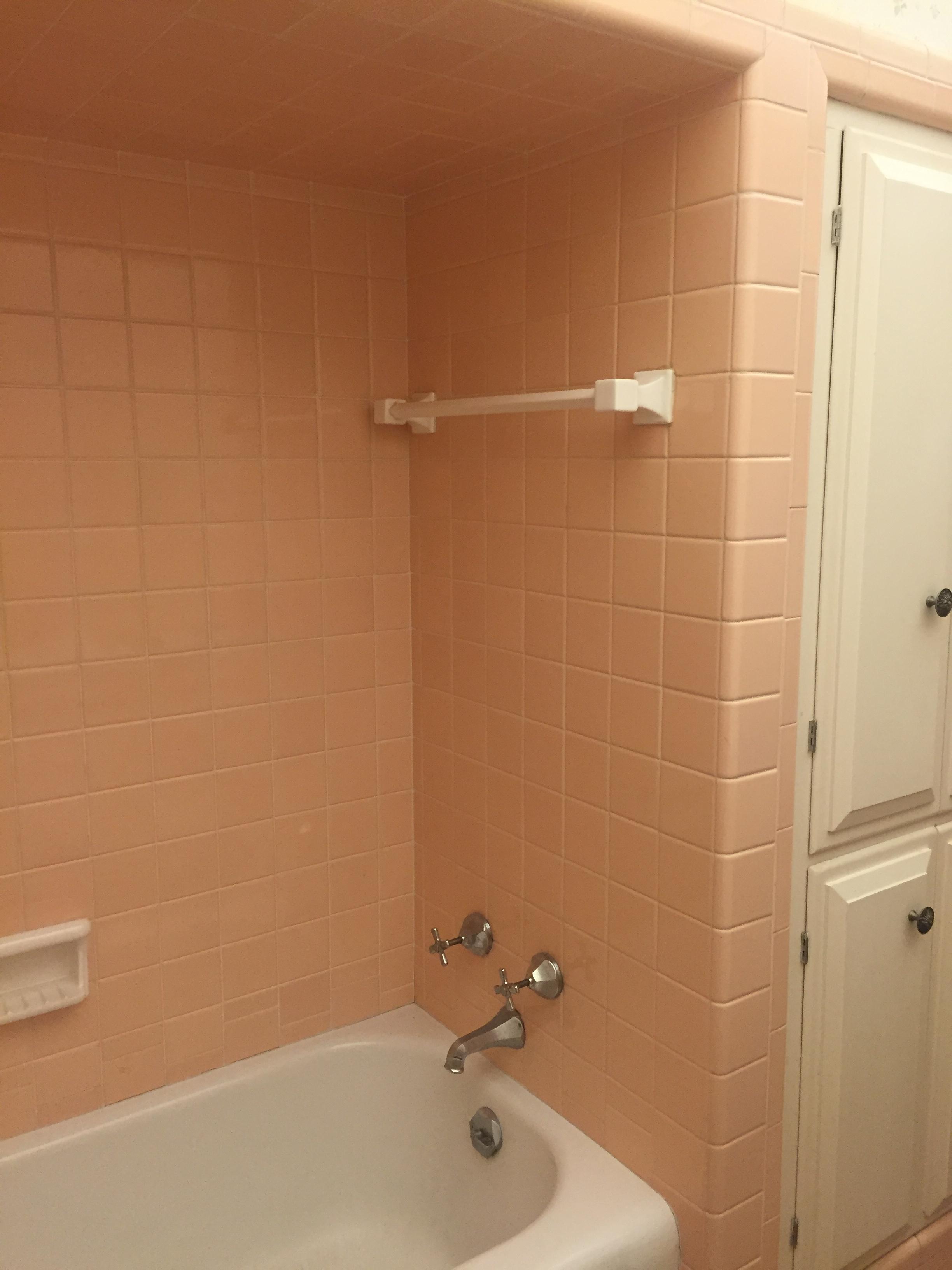 0091 Bath 1 Before.JPG