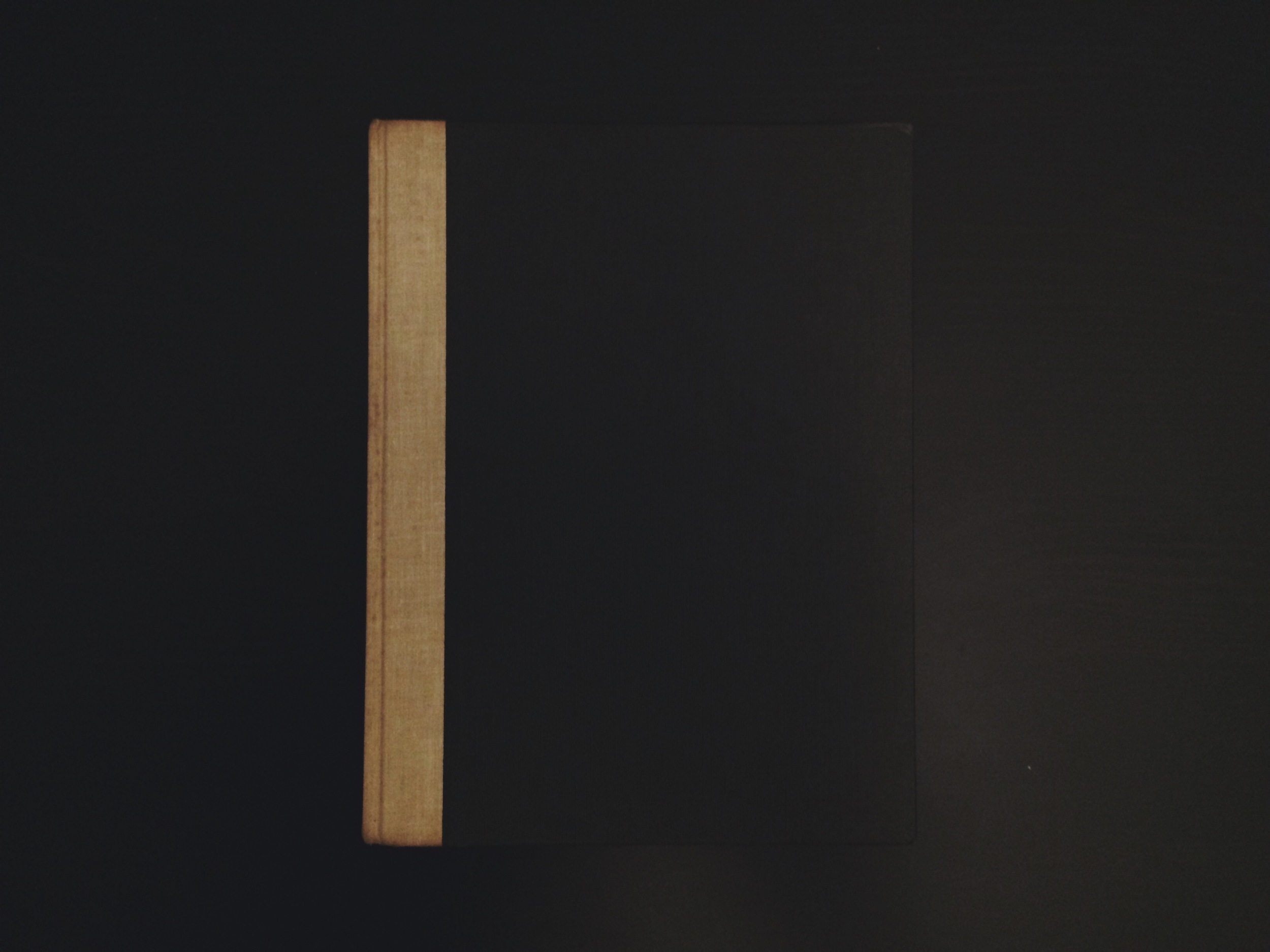 100 studies of the figure - john rawlings
