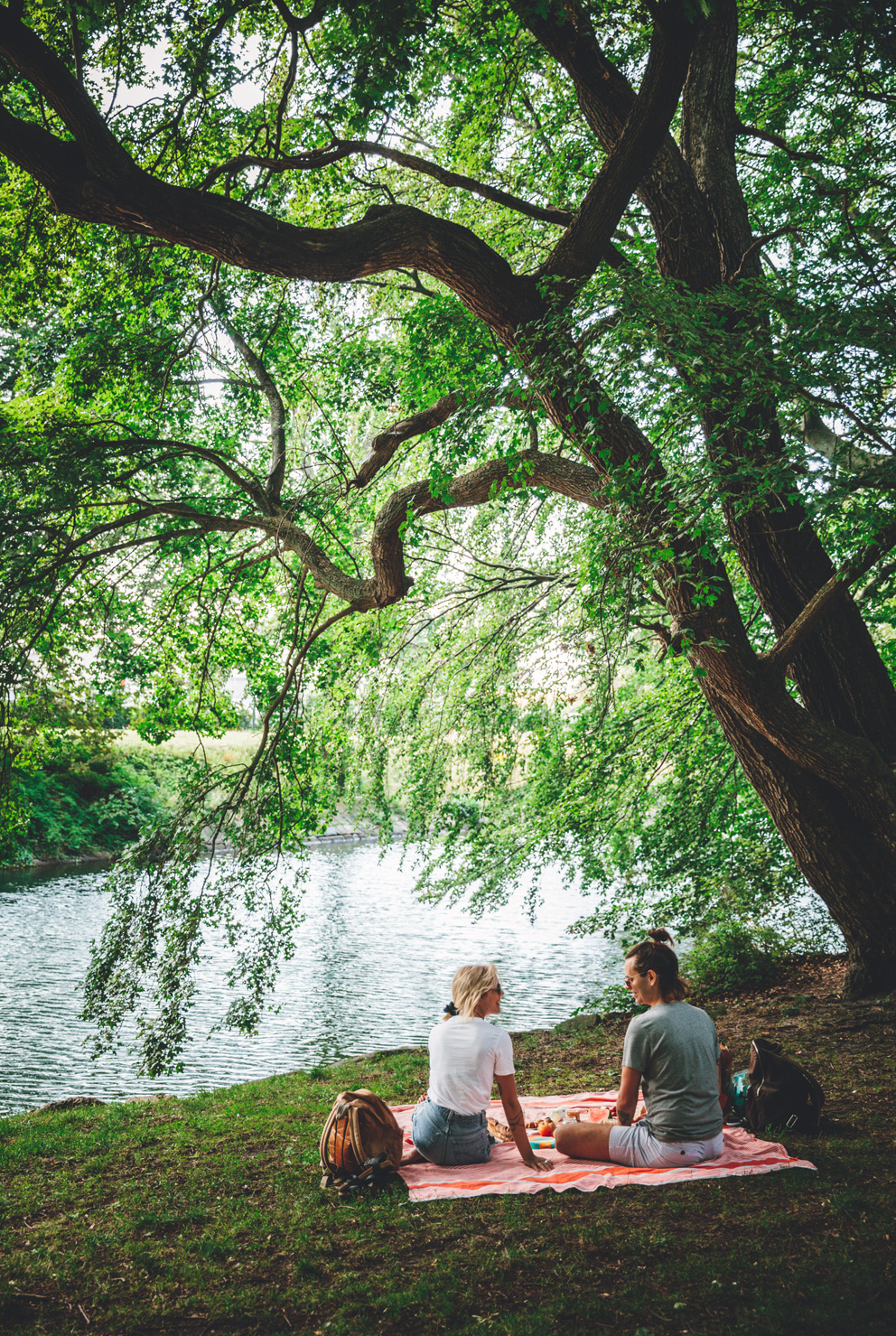 picnicny_s6473-2.jpg