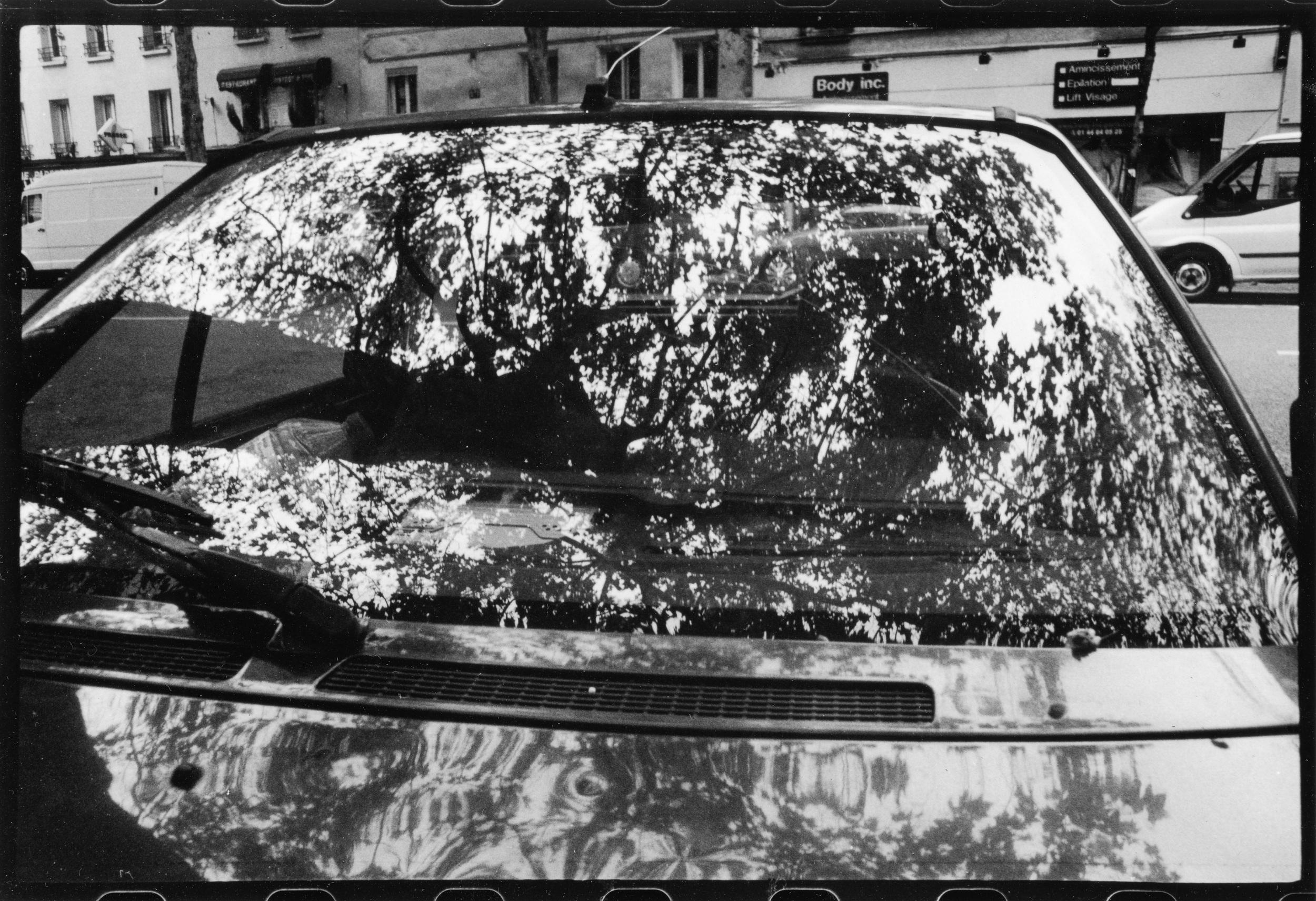 voiture arboree -2.jpg