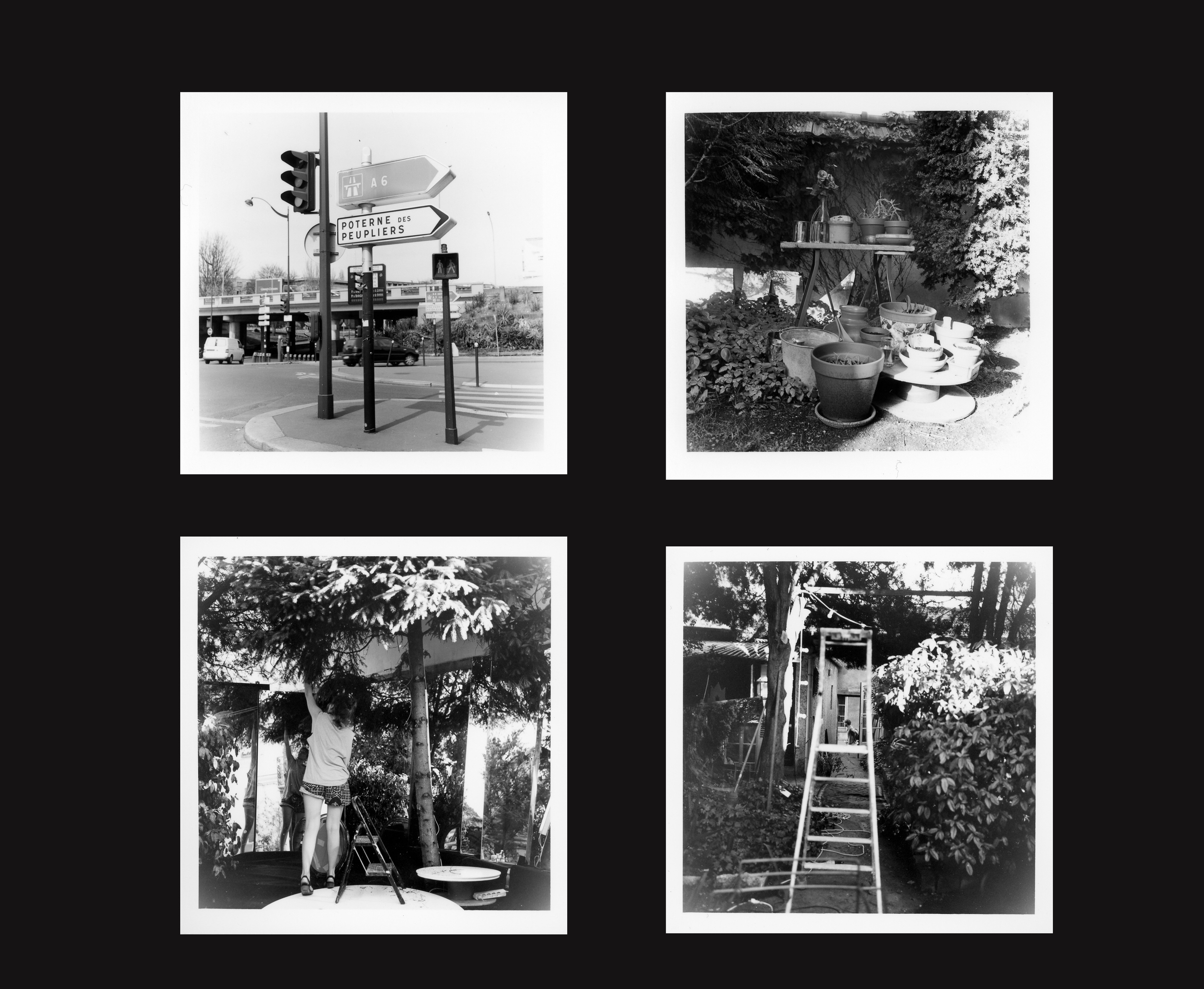 album13.jpg