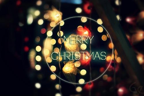 Merry Christmas Lights.Christmas Light Leina