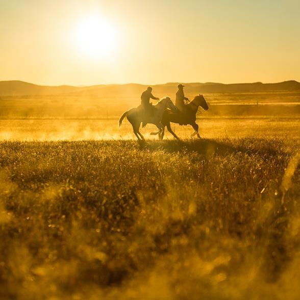 Mexican Farmers during harvest season | Chihuahuan Desert, Arizona