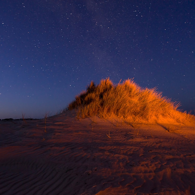 Starry Skies over the Yeagarup Dunes | D'Entrecasteaux National Park, Australia