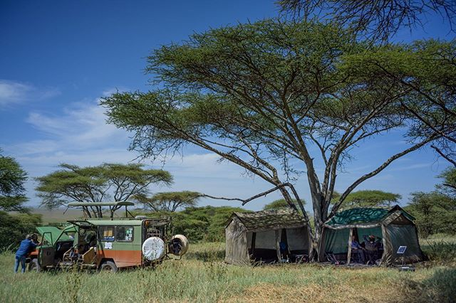 A peek behind the scenes of our home sweet home in the @serengeti_national_park during the production of our recently released film, Serengeti: Nature's Living Laboratory. Click the link in our bio to watch. #scicomm #serengeti
