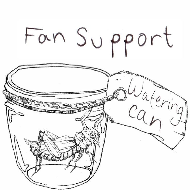 fansupport.jpg