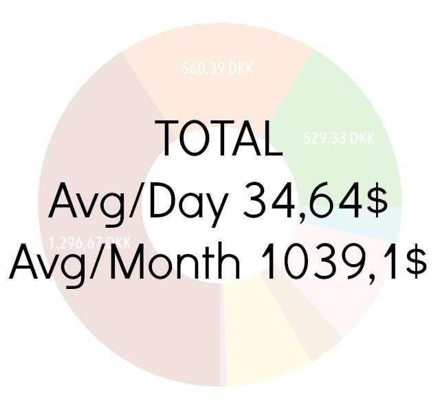 This average excludes days spent visiting our families and is therefore our actual traveling stats.