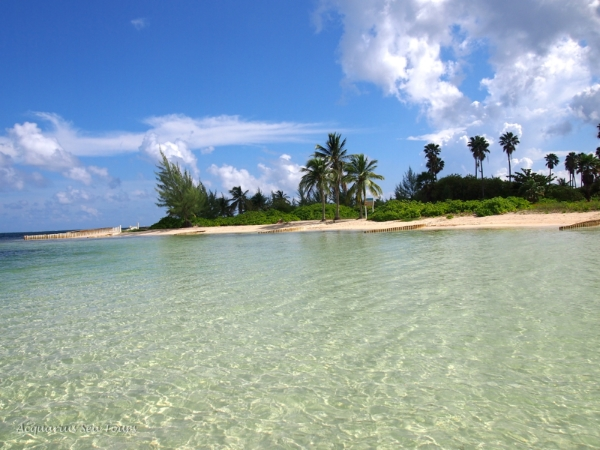 Starfish Point - a beautiful beach on the North End of Grand Cayman