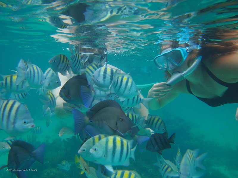 Snorkel tours and excursions in Grand Cayman