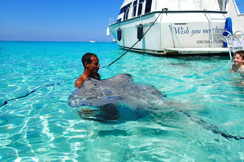 STINGRAY LESSON