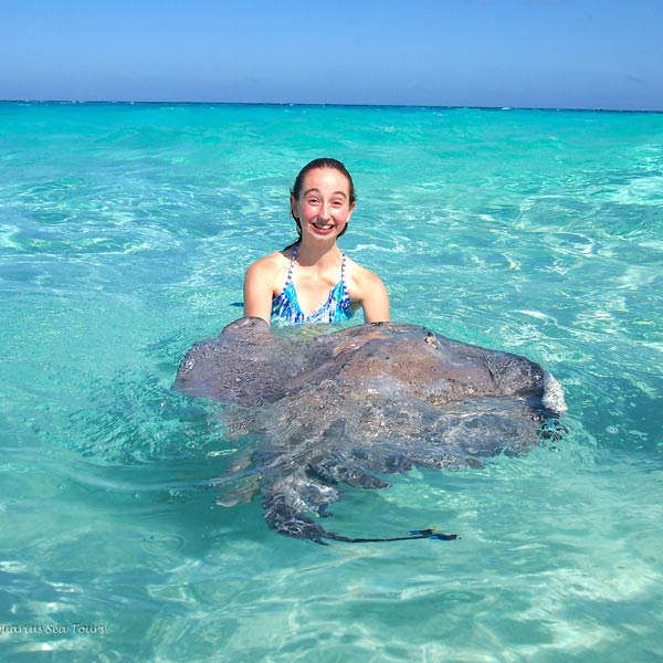 Tours to Stingray City Sandbar in Grand Cayman