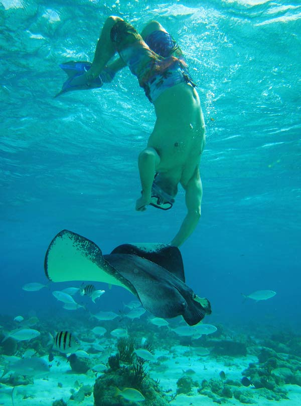 snorkel-excursions-grand-cayman-28011502